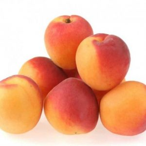 apricot honeyberry